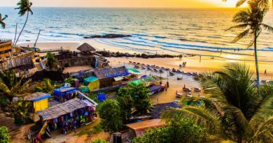 Rent A Car In Goa To Explore The Alluring Goa Beaches 3