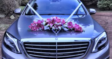Make Your Wedding Glamorous With Luxury Cars At Affordable Cost 2